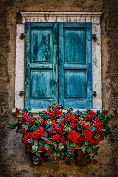 flowerwindow by Fabio Cappellini on - Malerei Unique Doors, Old Doors, Belle Photo, Painting Inspiration, Aesthetic Wallpapers, Watercolor Paintings, Landscape Paintings, Art Drawings, Pencil Drawings