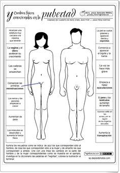 """""""Cambios físicos y emocionales en la pubertad) (Ciencias Naturales de Primaria"""""""