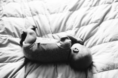 Sweet Newborn Babe #babyportraits #newbornphotos