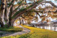 The Best Beach Towns to Visit This Winter: Fairhope, Alabama