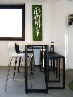 Tableau végétal, décoration intérieure murale, végétaux stabilisés. Office.