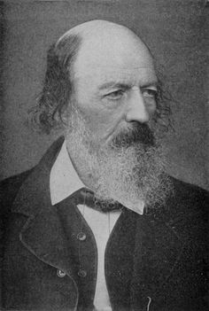 Alfred Lord Tennyson poems, biography, quotes, articles and more. Read and share Alfred Lord Tennyson poem examples and other information about and by famous poet Alfred Lord Tennyson In Memoriam Ahh, Animal Story Books, Tennyson Poems, The Casual Vacancy, Alfred Lord Tennyson, Ken Follett, Stieg Larsson, Water For Elephants, Liane Moriarty