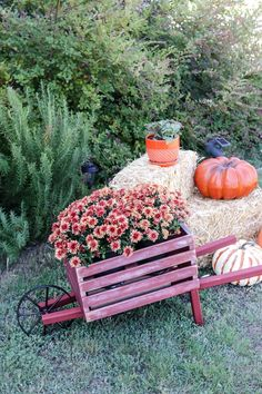 Perfect for Fall outdoor decor! How to build a rustic wheelbarrow.