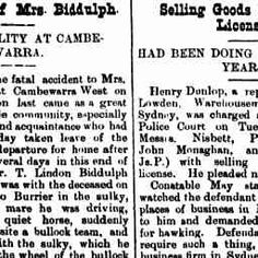 26 Oct 1895 - The Death of Mrs Biddulph. THE FATALITY AT CAMBE...