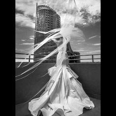 dress photo black and white wedding veil amazing wedding photo