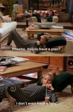 Phoebe is my soul animal