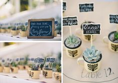tin cup succulent favours Perfectly Protea Vrede en Lust Wedding by Sybrand Cillié {Carlen & Lynton} Wedding Favours South Africa, Beach Wedding Favors, Unique Wedding Favors, Diy Wedding Decorations, Wedding Ideas, Wedding Gifts, Shed Wedding, Bush Wedding, Wedding Cups