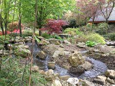 Japanse tuin met beek