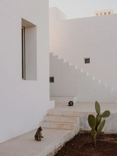 A series of minimal white blocks interlock to form Villa Cardo, a holiday home by Studio Andrew Trotter that takes cues from local architecture in Puglia. Architecture Design, Minimalist Architecture, Facade Design, House Design, Chinese Architecture, Architecture Office, Futuristic Architecture, Casa Cook, Outdoor Baths
