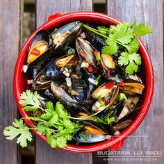 Mussels recipe with beer sauce. Mussels Recipe Beer, Calamari, Light Beer, Japchae, White Wine, Seafood, Bacon, Ethnic Recipes, Fine Dining