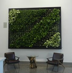 How to Create a Living Wall Check out these basic tips from vertical garden experts to help you grow up in your space. - See more at: http://www.hgtvgardens.com/garden-types/how-to-create-a-living-wall#sthash.0pOilgjn.nvmyKTKH.dpuf
