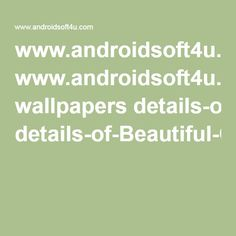 www.androidsoft4u.com wallpapers details-of-Beautiful-Colorful-Valley.aspx