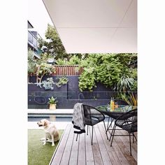 Happy weekend! If you're looking to rearrange your outdoor space to enjoy the sunshine over the coming days, check out our online gallery of perfect summer-ready entertaining areas: insideout.com.au.  Styling by Maria Dyoniziak. Photography by @smartanson.