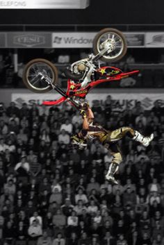 Fmx world championships Freestyle Motocross, World Championship, Motorcycle, Vehicles, World Cup, Motorcycles, Car, Motorbikes, Choppers