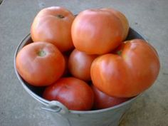 Aunt Martha's Garden Saving Heirloom Tomato Seeds