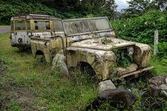 Abandoned Cars, Abandoned Vehicles, Cars Land, Land Rover Defender, Cool Photos, Monster Trucks, Pictures, Range Rovers, Buses