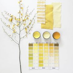 The colour of our rooms can influence our moods. Yellow captures the joy of sunshine and expresses happiness. Visual Story, Mood Board Interior, Interior Ideas, Material Board, Design Palette, Neutral Colour Palette, Color Palettes, Inspirational Wallpapers, Intelligent Design