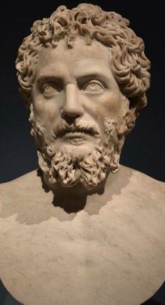 Septimius Severus se narodil ve městě Leptis Magna v dnešní Libyi jako syn jezdce Publia Septimia Gety a Fulvie Pie. Jeho rodnou řečí byla punština, řeč starého Kartága, velmi brzy však začal studovat řeckou a latinskou literaturu[2] a poté odešel kdalšímu vzdělávání do Říma, kde ho na přímluvu příbuzného přijal císař Marcus Aurelius do řad senátu.Vedle Diocletiana je bezpochyby nejvýznamnějším panovníkem 3.století.