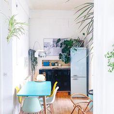 Un intérieur aux douces couleurs avec de la végétation / Kitchen with plants and pastel colors