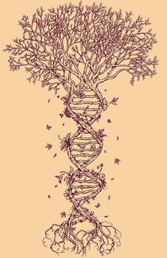 Tree DNA Tattoo | Rene Campbell ...top it with brain structure? or would the whole 'tree' appearance be lost... by JustLinnea