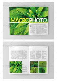 4 templates for indesign Indesign Templates   10 Cool Magazines of 2013