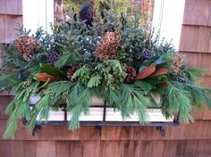Gorgeous windowbox design! Spruce tops, pine and arborvitae accented with magnolia leaves, pine cones, pods and dried hydrangea