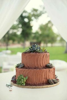 chocolate groom's cake with succulents | Sarah Kate Photography