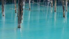 The Blue Pond in Hokkaido Changes Colors Depending on the Weather - photographed by Ken Shiraishi