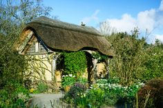 RHS Garden Rosemoor - The Cottage Garden in spring.