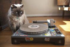 DJ Cat Turntable