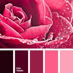 Color Palette 3220