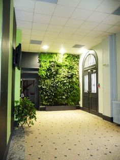Vertical Garden: A Real Sensation of Being in the Heart of a Luxuriant Vegetation