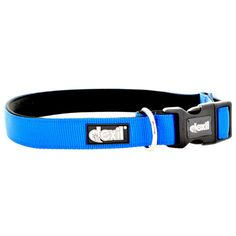 Dexil ROYAL BLUE Dog Collar   two sizes available