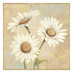 Beautiful Daisies I reproduction procédé giclée par Daphne Brissonnet sur AllPosters.fr