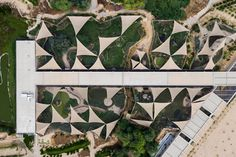 Over 350 species of bird have made their home at this wetland centre, built by local firm X Architects on a former rubbish dump on the outskirts of Dubai