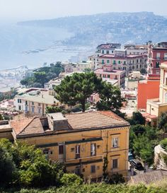 The Neapolitan Novels, by Elena Ferrante