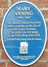 Mary Anning, British fossil collector, dealer, and palaeontologist.  Her work contributed to fundamental changes that occured during her lifetime in scientific thinking about prehistoric life and the history of the Earth.
