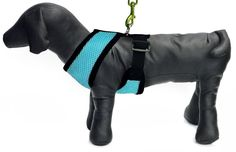 Platinum Pets Small Reflective Mesh Sport Harness, Blue * You can get more details by clicking on the image. (This is an Amazon affiliate link)