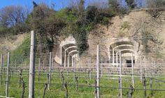 Cannoniere Monte Fortin ingressi dalla vigna