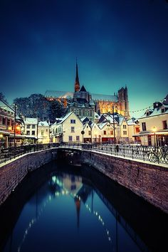 Winter Cathedral - #Amiens, France
