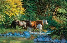 Bear Creek Crossing - 1000 piece jigsaw puzzle. Description from puzzlewarehouse.com. I searched for this on bing.com/images