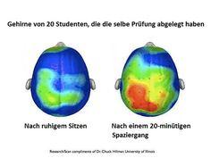 """In unserer Rubrik """"Abitur Tipps"""" erfährst du, was dir in deiner Abiturvorbereitung wirklich hilft und deine Konzentration fördert!"""