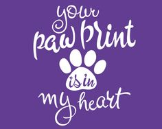 Repin this for your furry bundles of joy! #PetLovers #LoveYourPetDay#Ecard