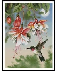 This lovely counted cross stitch pattern of a Hummingbird and Fuschia's was created from artwork copyright of Thomas Wood. Licensed through Porterfield's LLC. Only full cross stitches are used in this pattern.