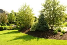 Use berms (aka small mounds) to create a boarder between properties or to break up a monotonous yard.
