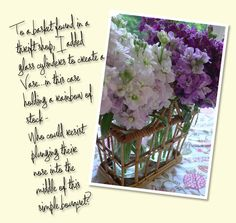 charlotte moss blog