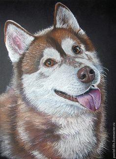 Рисуем аляскинского маламута пастелью - Ярмарка Мастеров - ручная работа, handmade