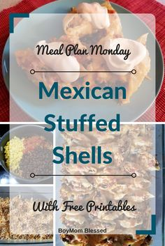 Before I give my Mexican Stuffed Shells recipe away, here's what's happened in my crazy life I live over the last few weeks.   I took a brief break from the blogging world. My sister had a life rut, my husband was in a career crisis (not a serious one), and my son was having …