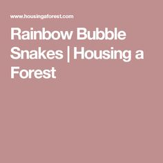 Rainbow Bubble Snakes | Housing a Forest
