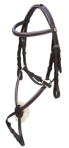 Pink Equine Sport INTERChange Bridle - clearly Ellie needs a bridle with baby blue piping...